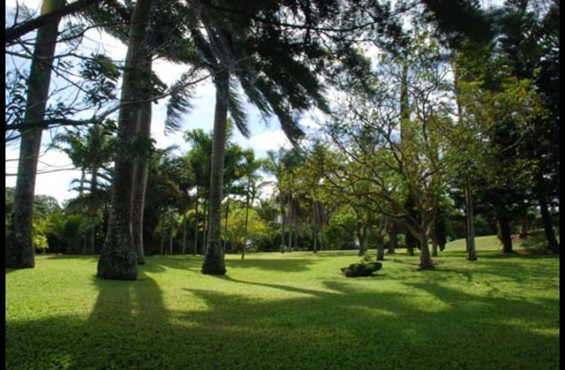 Pililani offers four acres of tropical grounds.