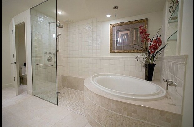 Master Bathroom Tub and Walk-in Shower